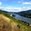 Rhein Landschaft